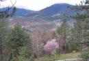 Zlatibor: Nyugat-Szerbia varázslatos vidéke